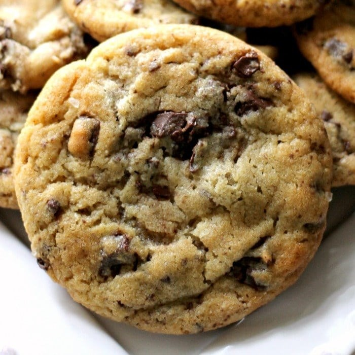 chocolate chip cookie
